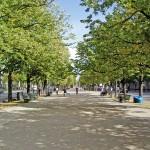 http://www.berlijntrip.nl/wp-content/uploads/2013/11/Unter-den-Linden-36831.jpg