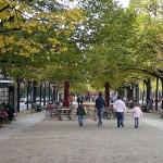 http://www.berlijntrip.nl/wp-content/uploads/2013/11/Unter-den-Linden-36832.jpg