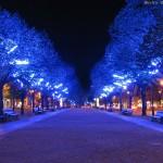 http://www.berlijntrip.nl/wp-content/uploads/2013/11/Unter-den-Linden-36834.jpg